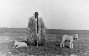 Hungarian-shepherd-593x375